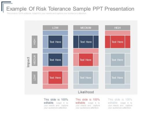 Example Of Risk Tolerance Sample Ppt Presentation