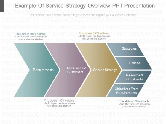 Example Of Service Strategy Overview Ppt Presentation