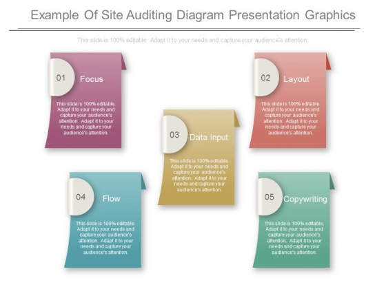Example Of Site Auditing Diagram Presentation Graphics