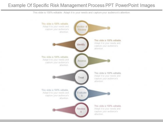 Example Of Specific Risk Management Process Ppt Powerpoint Images