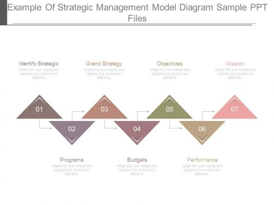 Example Of Strategic Management Model Diagram Sample Ppt Files