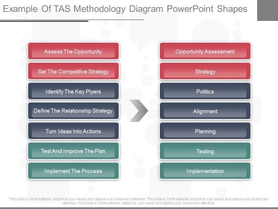 Example Of Tas Methodology Diagram Powerpoint Shapes