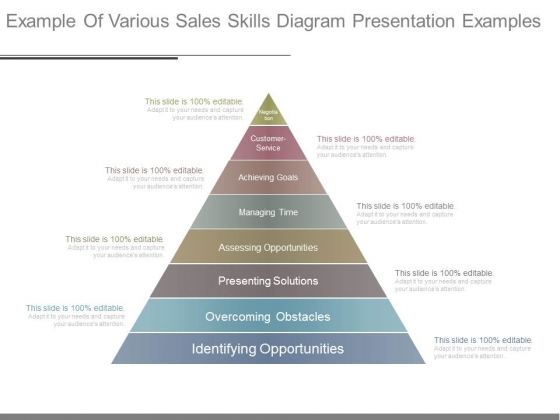 Example Of Various Sales Skills Diagram Presentation Examples