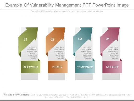 Example Of Vulnerability Management Ppt Powerpoint Image