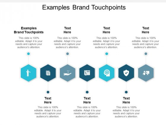 Examples Brand Touchpoints Ppt PowerPoint Presentation Gallery Model Cpb