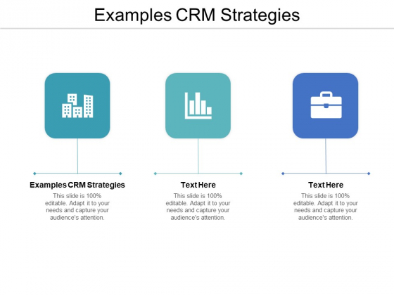 Examples CRM Strategies Ppt PowerPoint Presentation Icon Objects