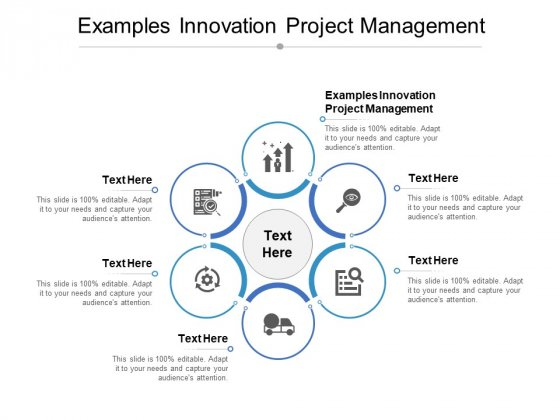 Examples Innovation Project Management Ppt PowerPoint Presentation Portfolio Background Cpb