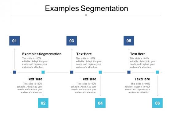 Examples Segmentation Ppt PowerPoint Presentation Summary Model Cpb