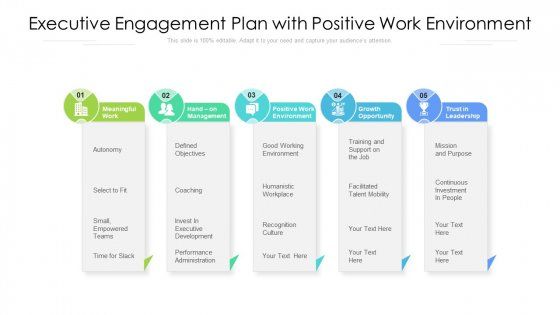 Executive Engagement Plan With Positive Work Environment Ppt Infographics Backgrounds PDF
