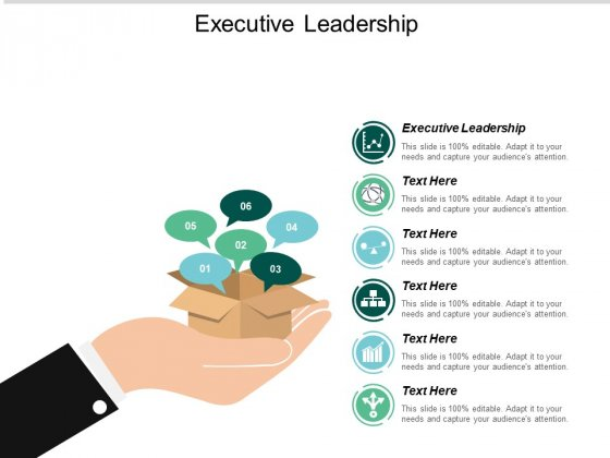 Executive Leadership Ppt PowerPoint Presentation Gallery Graphics Template Cpb
