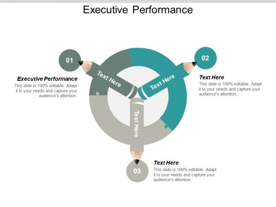 Executive Performance Ppt PowerPoint Presentation Professional Visual Aids Cpb