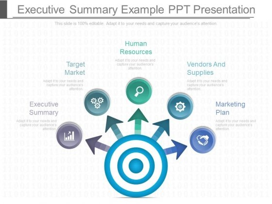 Executive Summary Example Ppt Presentation  Powerpoint Templates