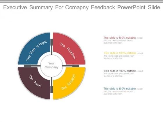 Executive Summary For Comapny Feedback Powerpoint Slide