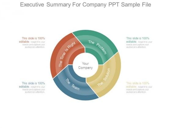 Executive Summary For Company Ppt Sample File
