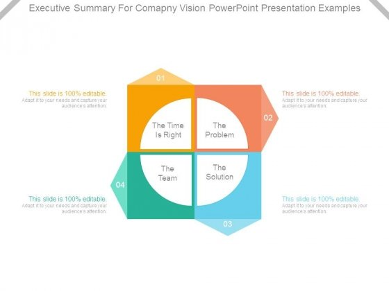 Executive Summary For Company Vision Powerpoint Presentation Examples
