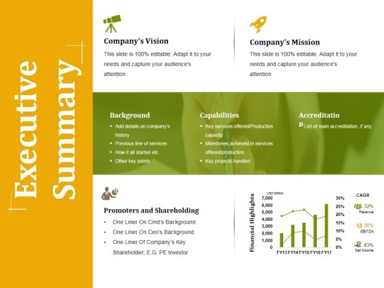 executive summary ppt powerpoint presentation professional example