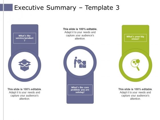 Executive Summary Template 3 Ppt PowerPoint Presentation Model Introduction