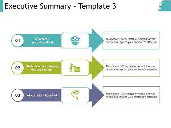 Executive Summary Template 3 Ppt PowerPoint Presentation Portfolio
