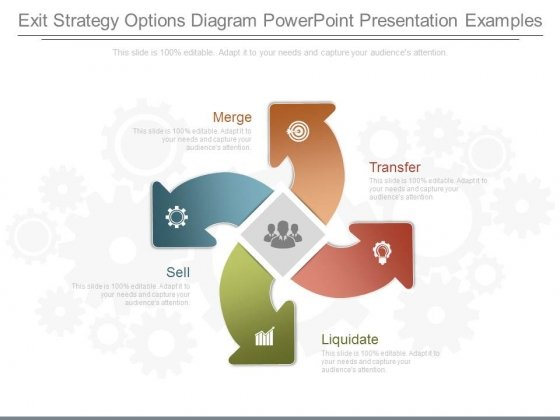 Exit Strategy Options Diagram Powerpoint Presentation Examples