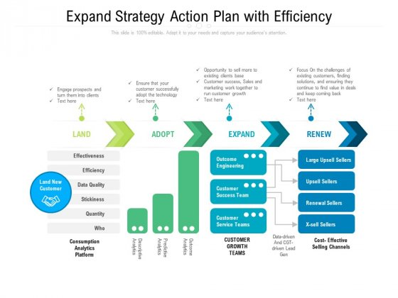 Expand Strategy Action Plan With Efficiency Ppt PowerPoint Presentation Summary Layout Ideas PDF