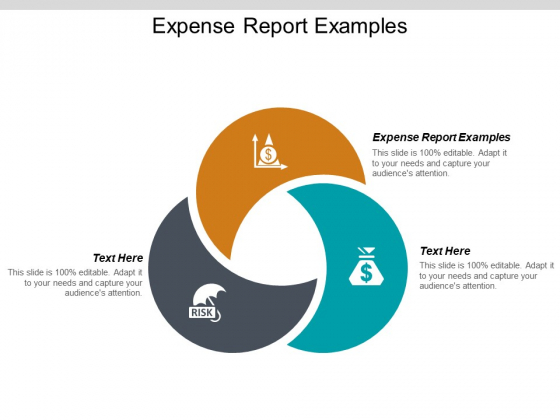 Expense Report Examples Ppt PowerPoint Presentation Styles Sample Cpb