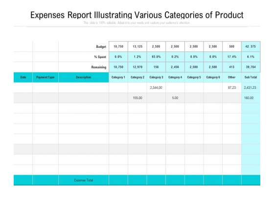 Expenses Report Illustrating Various Categories Of Product Ppt PowerPoint Presentation Gallery Influencers PDF
