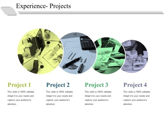 Experience Projects Ppt PowerPoint Presentation Pictures Show