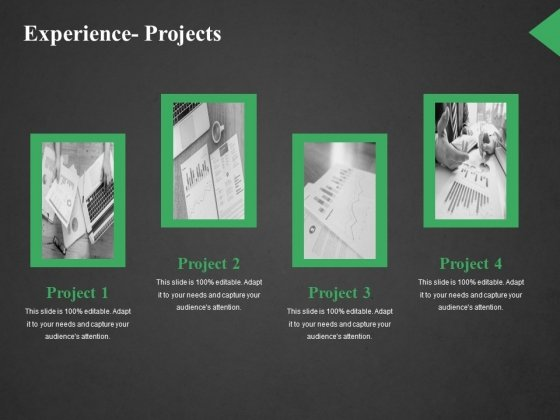 Experience Projects Ppt PowerPoint Presentation Slides Demonstration