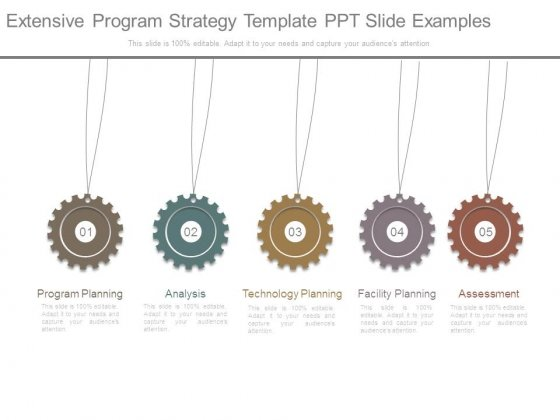 Extensive Program Strategy Template Ppt Slide Examples