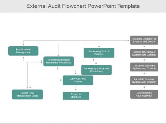 External Audit Flowchart Ppt PowerPoint Presentation Pictures