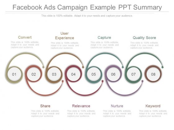 Facebook Ads Campaign Example Ppt Summary