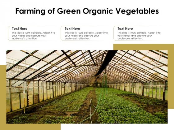 Farming Of Green Organic Vegetables Ppt PowerPoint Presentation Deck PDF
