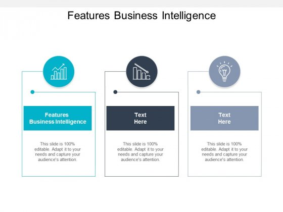 Features Business Intelligence Ppt PowerPoint Presentation Outline Tips Cpb