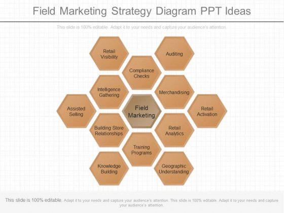 Field Marketing Strategy Diagram Ppt Ideas