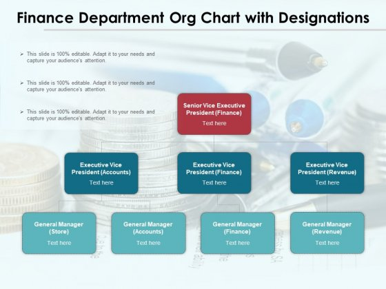 Finance Department Org Chart With Designations Ppt PowerPoint Presentation Professional Show PDF
