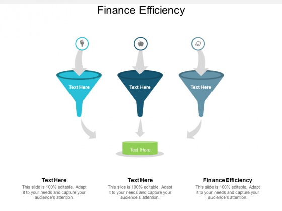 Finance Efficiency Ppt PowerPoint Presentation Show Design Inspiration Cpb