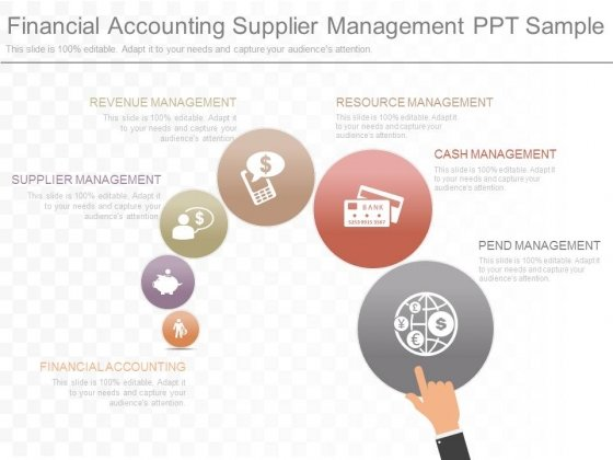 Financial Accounting Supplier Management Ppt Sample