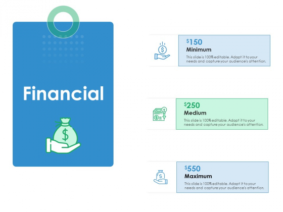 Financial Action Priority Matrix Ppt Model Infographic Template PDF