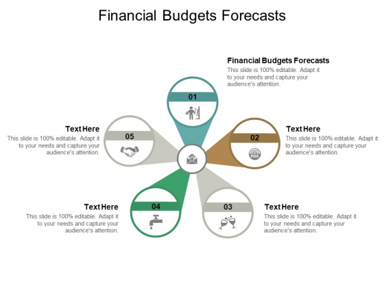 Financial Budgets Forecasts Ppt PowerPoint Presentation Files Cpb