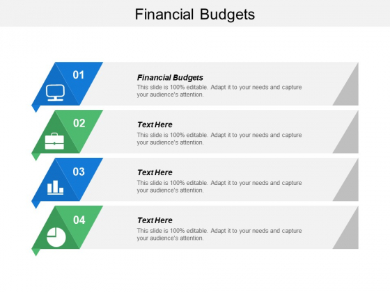 Financial Budgets Ppt PowerPoint Presentation Styles Example File Cpb