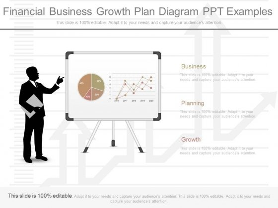 Financial Business Growth Plan Diagram Ppt Examples