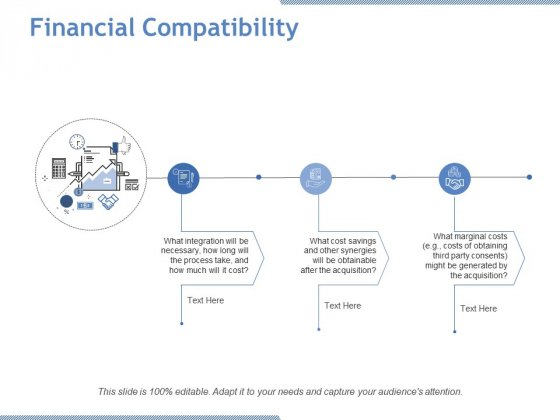 Financial Compatibility Ppt PowerPoint Presentation Icon Visual Aids