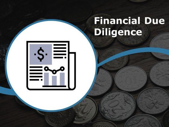 Financial Due Diligence Ppt PowerPoint Presentation Infographic Template Brochure