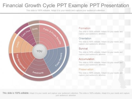 Financial Growth Cycle Ppt Example Ppt Presentation