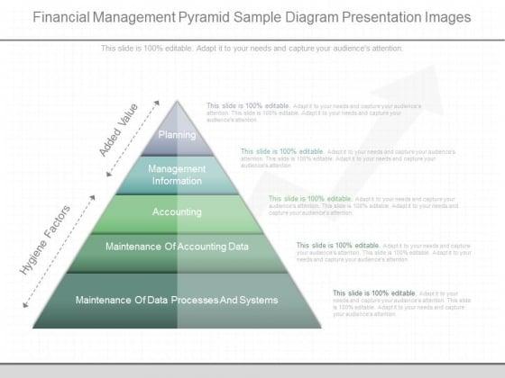 Financial Management Pyramid Sample Diagram Presentation Images