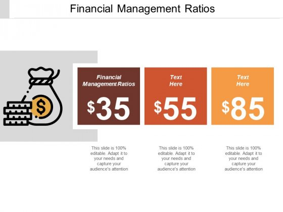 Financial Management Ratios Ppt PowerPoint Presentation Pictures Mockup Cpb