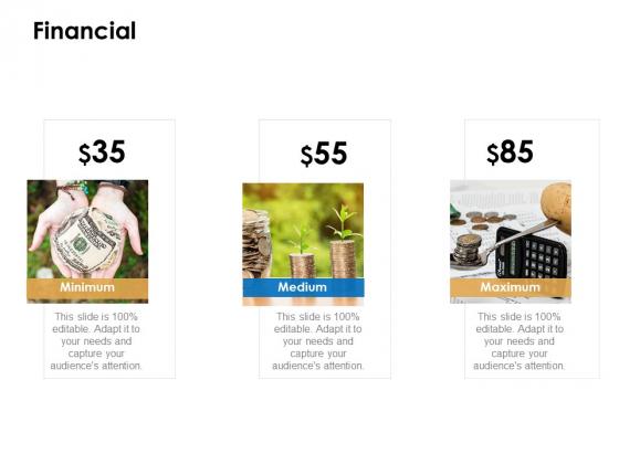 Financial Minimum Ppt PowerPoint Presentation Styles Inspiration