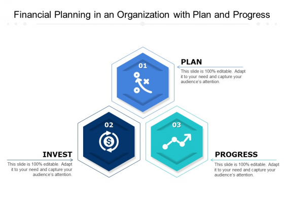 Financial Planning In An Organization With Plan And Progress Ppt PowerPoint Presentation Icon Ideas PDF