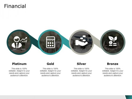 financial platinum business ppt powerpoint presentation layouts elements