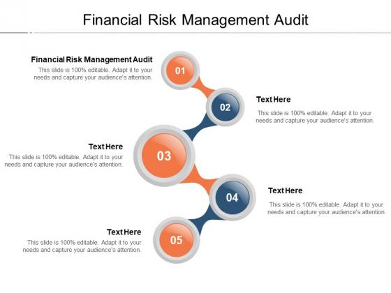 Financial Risk Management Audit Ppt PowerPoint Presentation Inspiration Templates Cpb Pdf